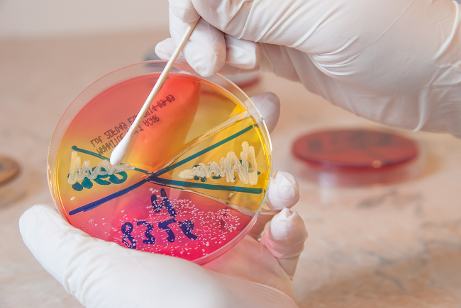 What you need to know about MRSA