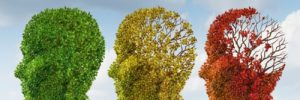 An eye on dementia