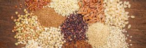 Understanding whole grains: Beyond just wheat