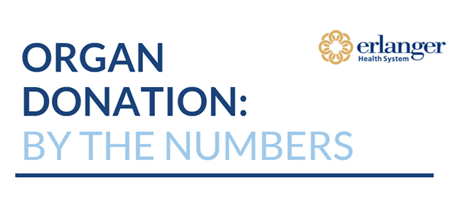OrganDonationByTheNumbers_infographic-header