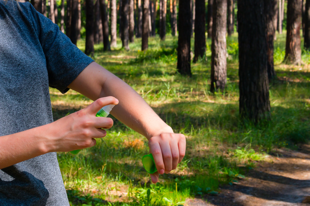 It's bug bite season: How can you protect yourself?