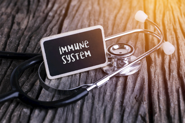 What to eat to boost your immune system